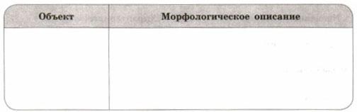 Таблица морфологическое описание объектов