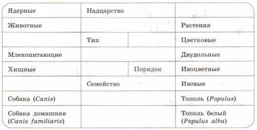 Таблица характеризующая соподчинение систематических групп