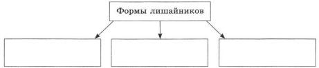 Схема Формы лишайников